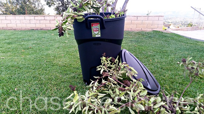 Cleaning the yard up for Fall! #FallFixUp @Rubbermaid #PMedia #Ad