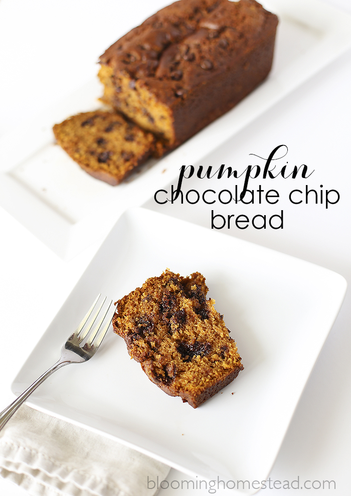 12Pumpkin-Chocolate-Chip-Bread-copy