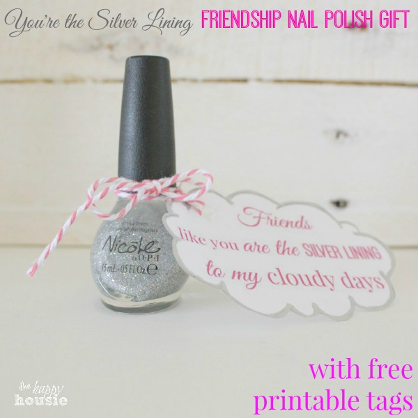 Youre My Silver Lining Friendship Nailpolish Gift By 10 Last Minute Holiday Gifts