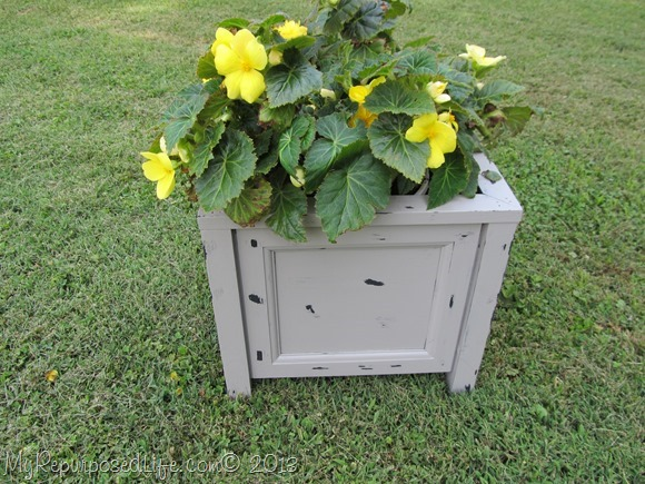 make-your-own-planter