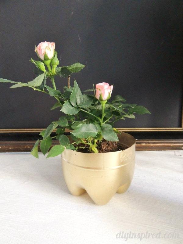 repurposed planter ideas