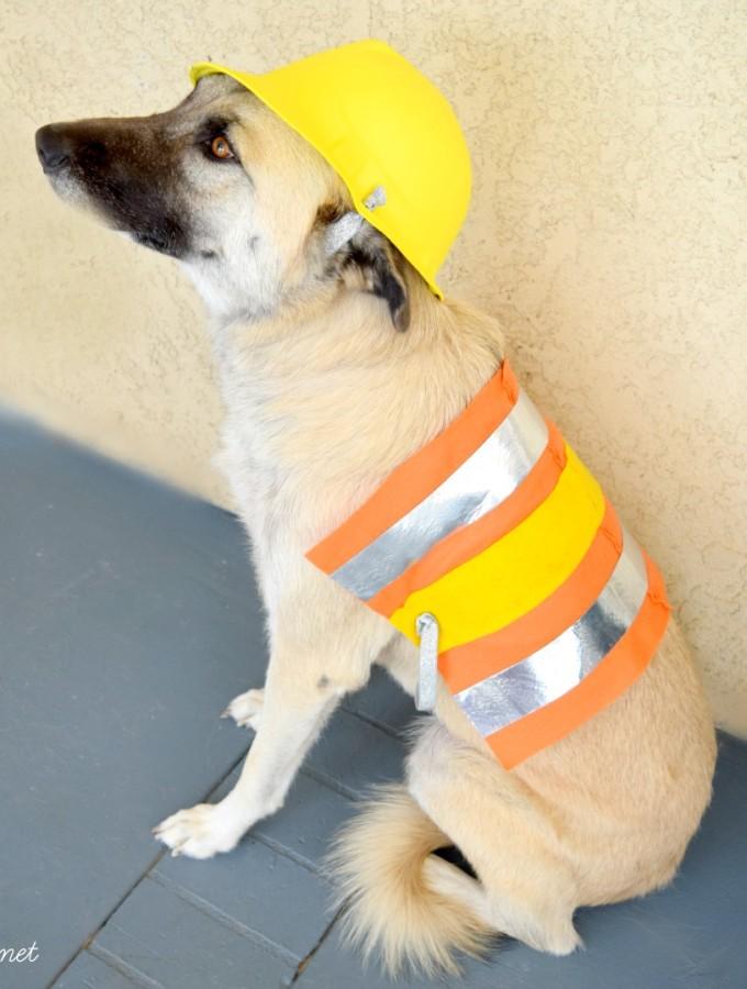 DIY Pet Costume Construction Worker #michaelsmakers