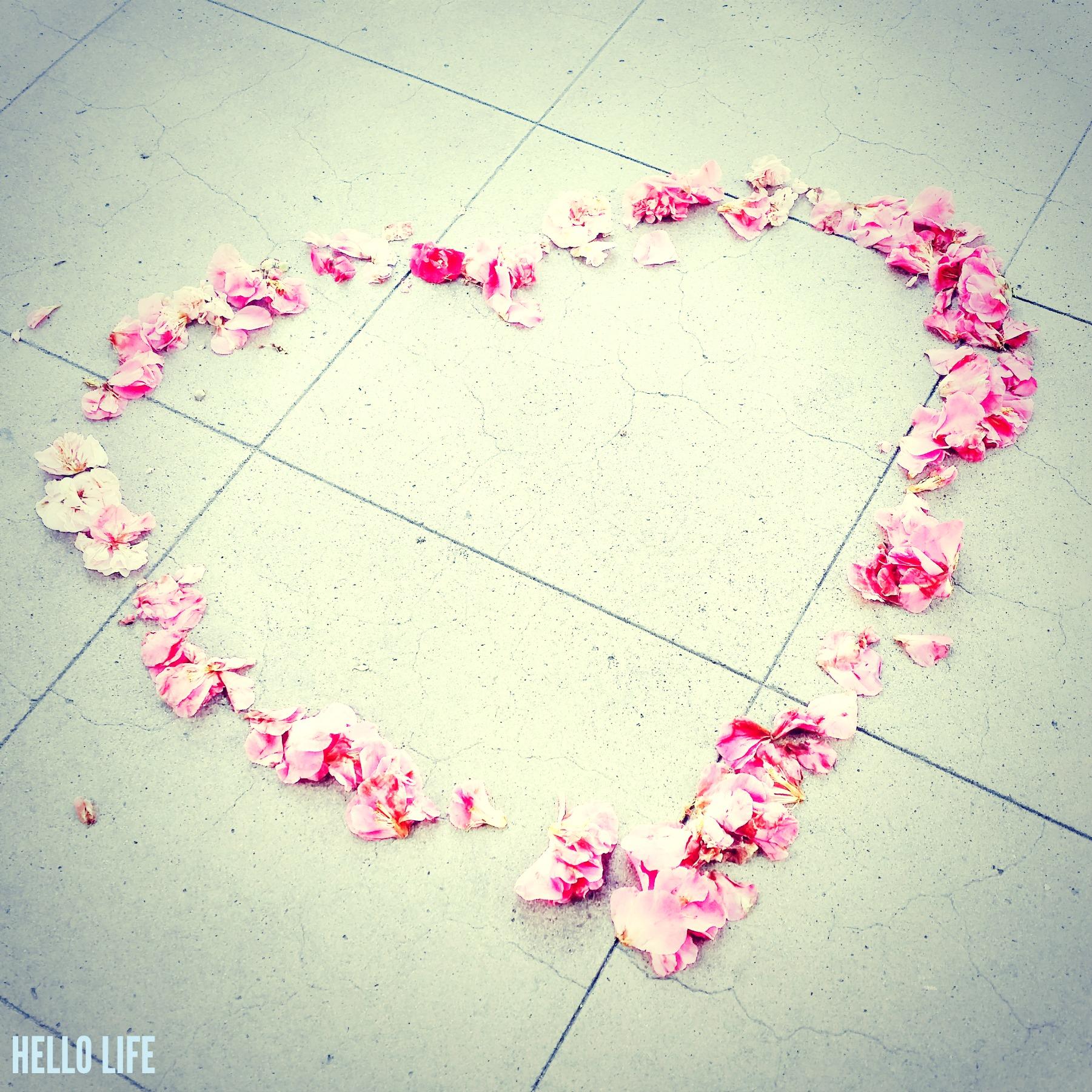Flower Petals Heart via Hello Life hellolifeonline.com