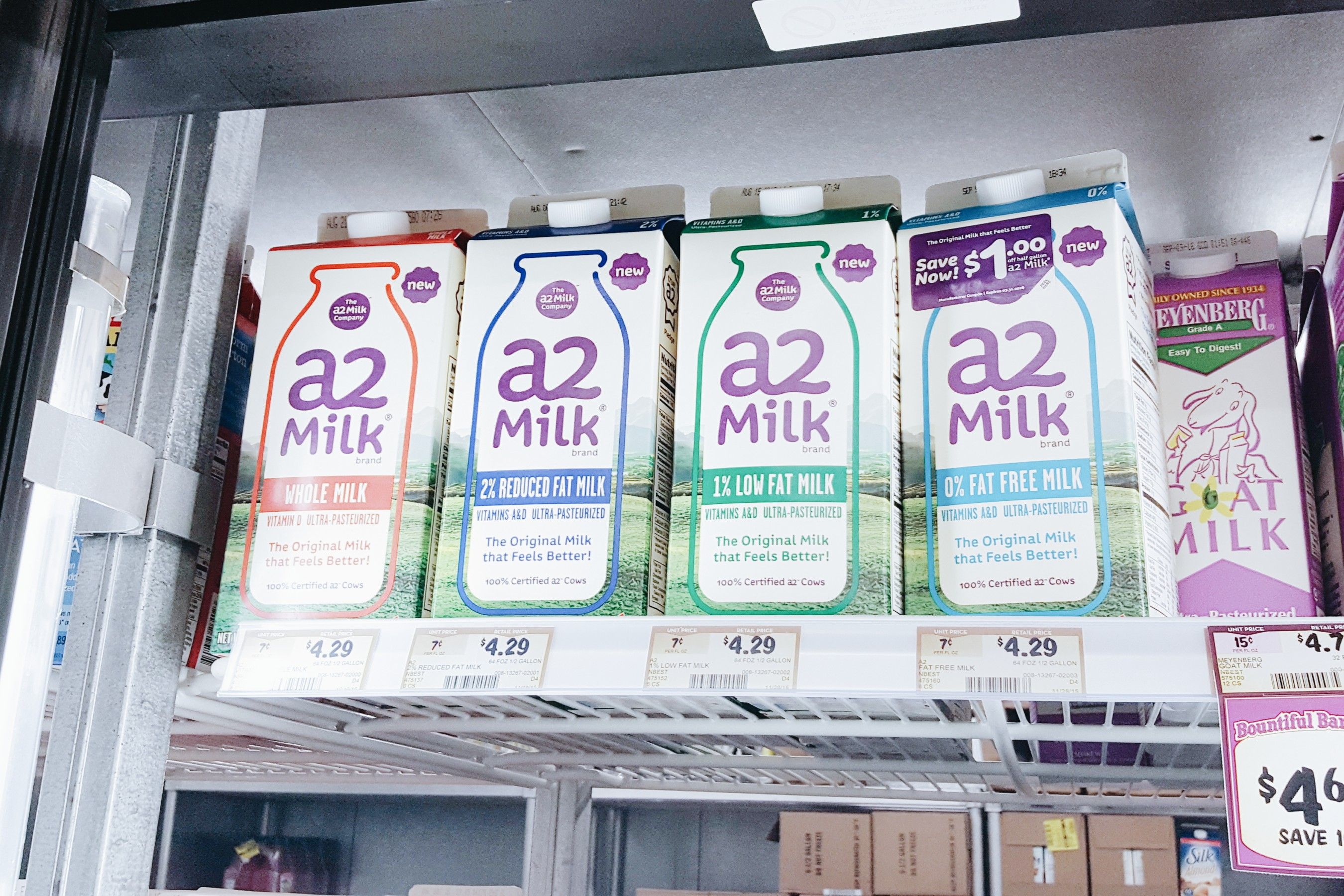 #A2milk available in retailers #IC #ad